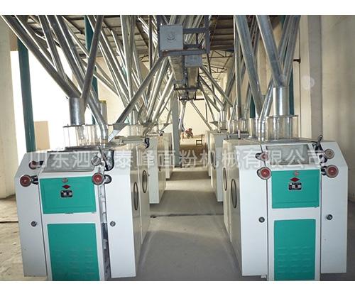 日产60吨面粉加工成套设备哪家好?